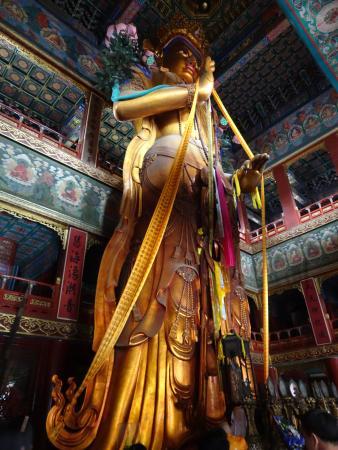 Пекин Площадь Тяньаньмэнь статуя Будды обучение ТКМ в Китае