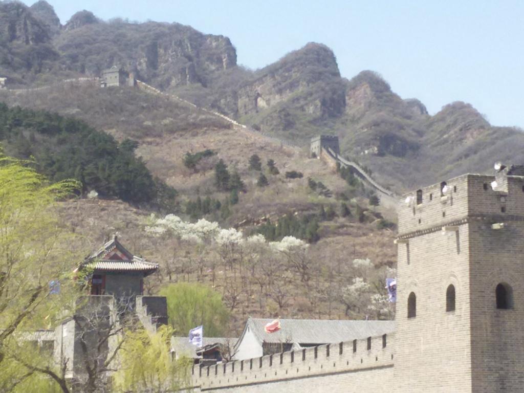 Тяньцзинь Великая Китайская стена Обучение ТКМ в Китае
